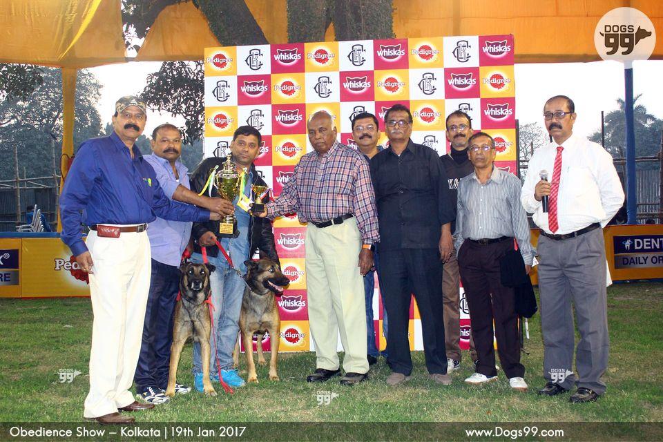Kolkata Kennel Club Dog Show